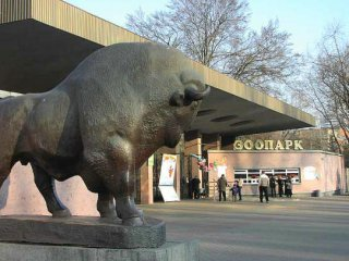 zoopark 1