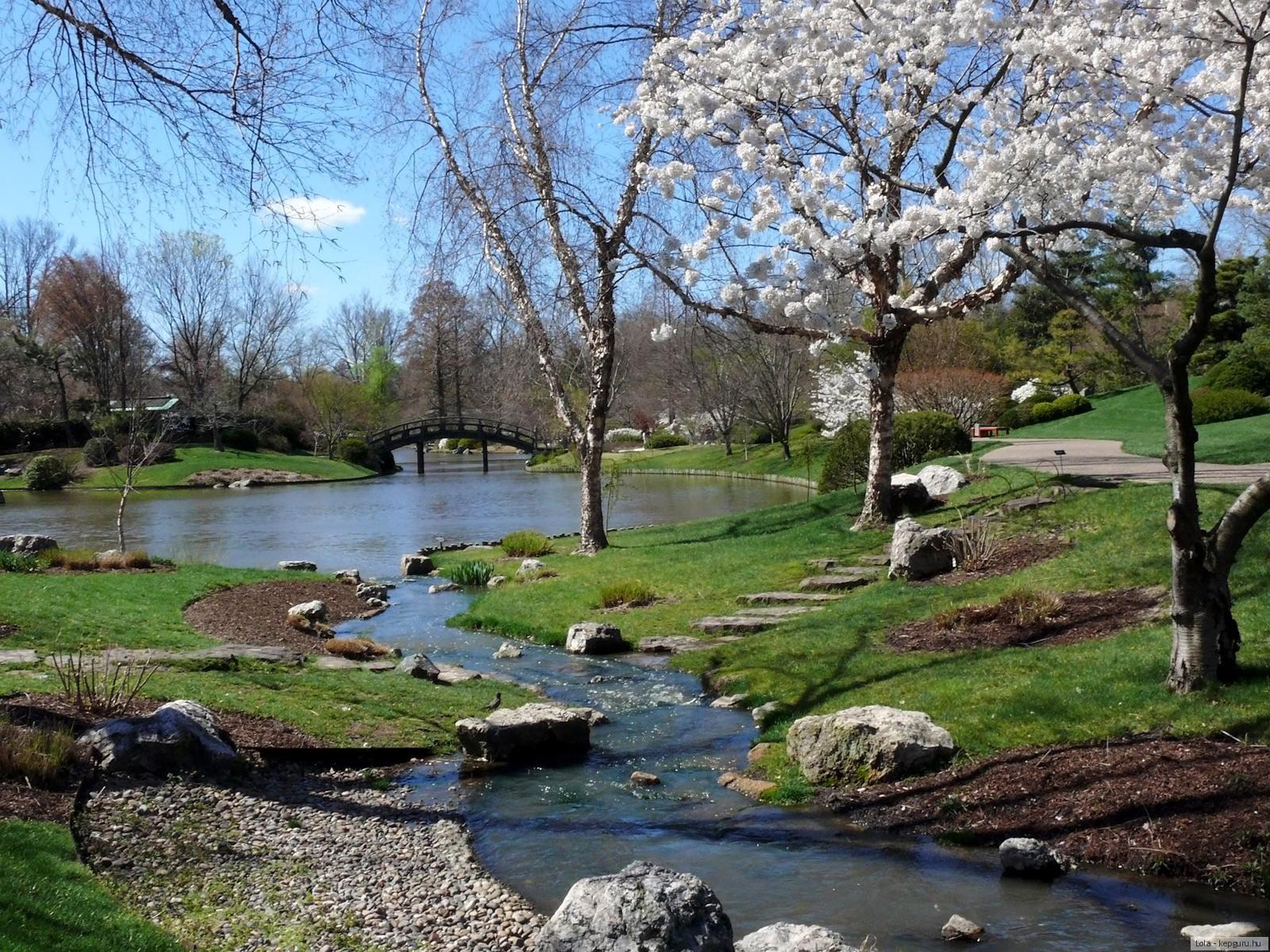 Весна фото пейзажи, весенние фотографии природы